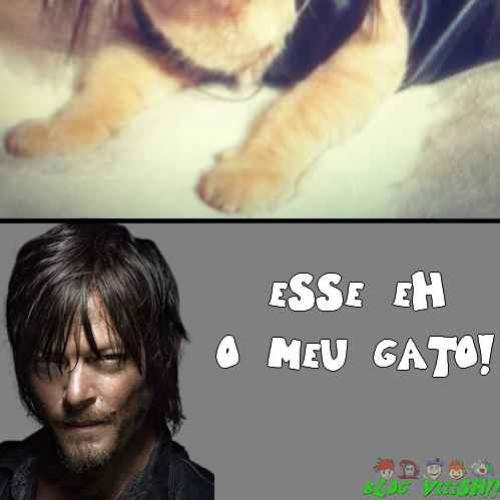 Gato do Daryl - TWD