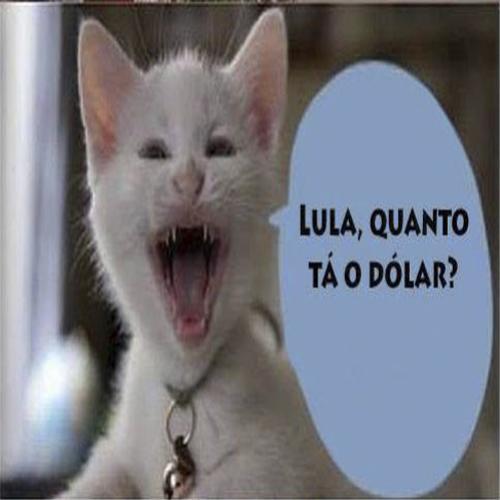 Lula Quanto Está O Dólar