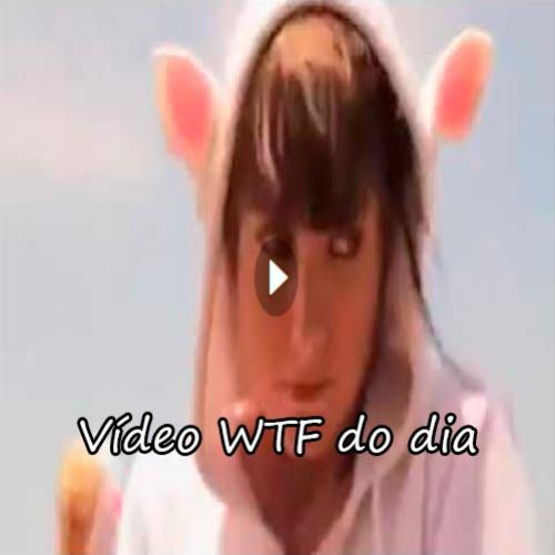 Vídeo WTF do dia